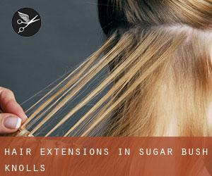 Hair extensions in sugar bush knolls portage county ohio usa when employing sugar bush knolls hair extensions as the permanent extension physical exercise restraint in the use of bonding glue on your all natural hair pmusecretfo Choice Image